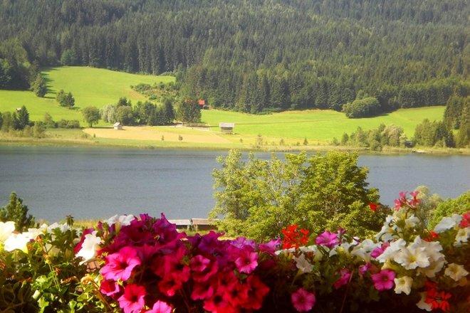 Haus Birke - Sommer Bild